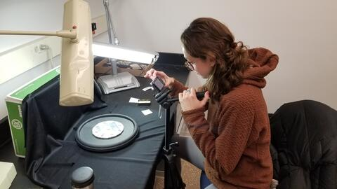 An undergraduate student works on their research project